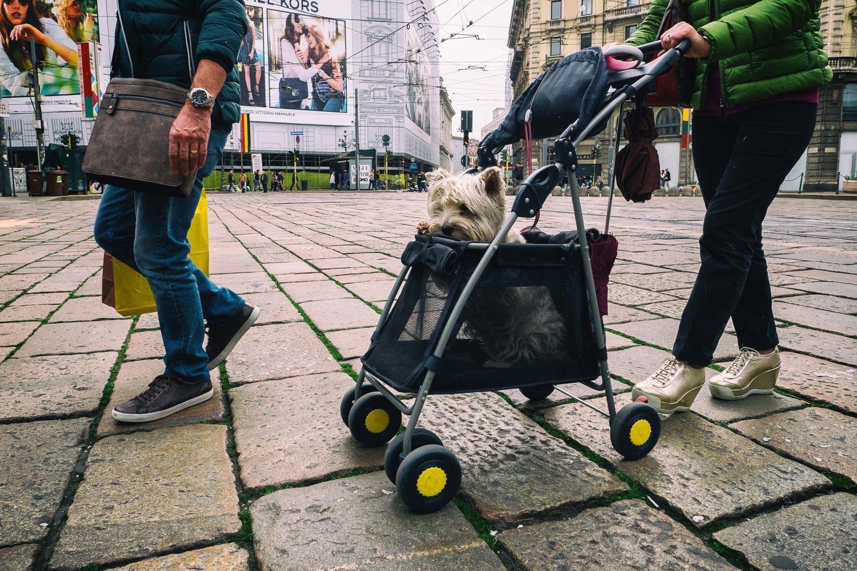Milano 01, Piazzale Cordusio